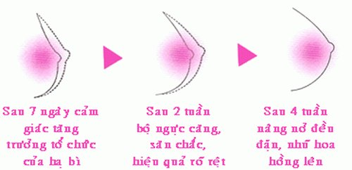 kem-no-nguc-bio-pro-6