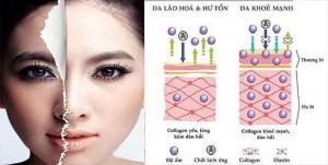 lam-dep-da-tu-collagen-co-tot-khong-2